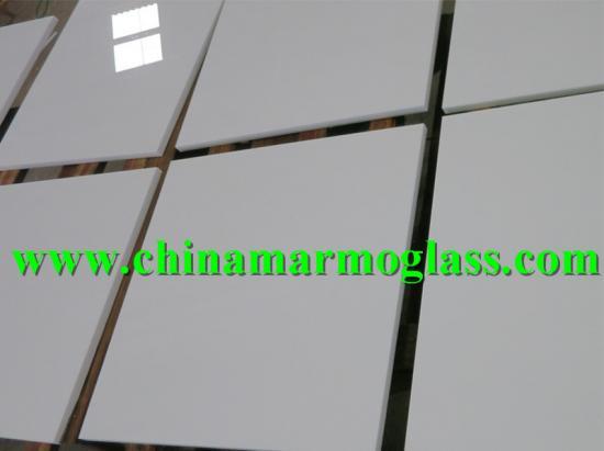 Nanoglass Nano White Glass Tile 24x24 Polished
